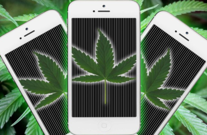 Data Drives The Marijuana Industry with Technology