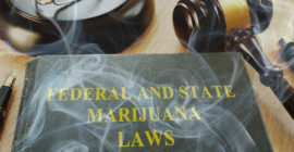 Marijuana Laws and Cannabis Law Professional.