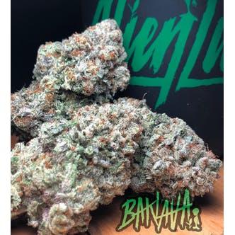 Baklava Indoor Cannabis Flower