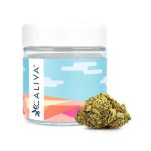 Caliva Z Cube Sativa Flower