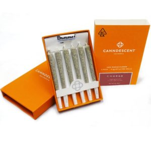 Canndescent Charge Mini 6 Pack 3g